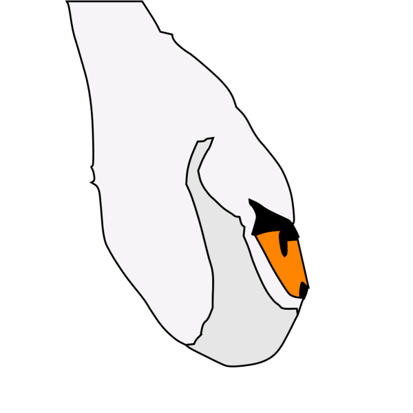 Swan 7 PNG images