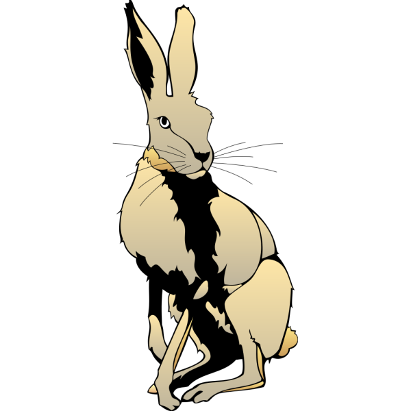 Sitting Hare PNG images