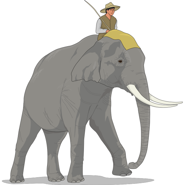 Elephant And Rider PNG Clip art