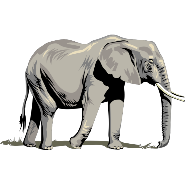 Walking Elephant Side View PNG Clip art