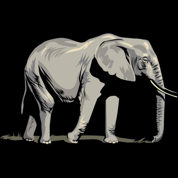 Walking Elephant Side View PNG Clip art