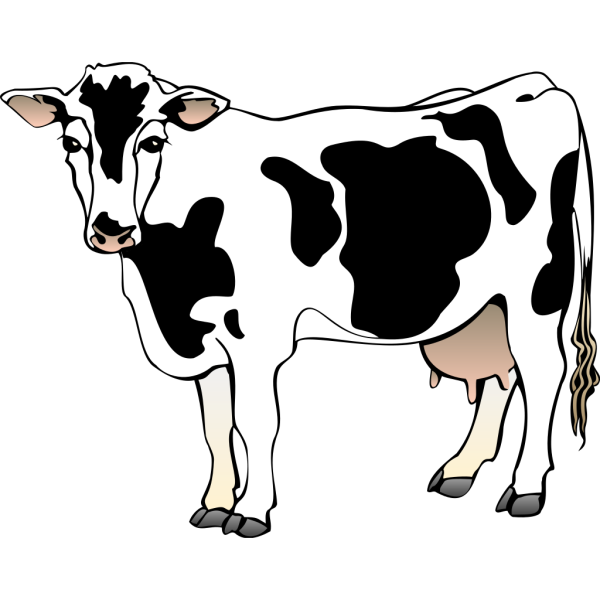Standing Cow PNG Clip art