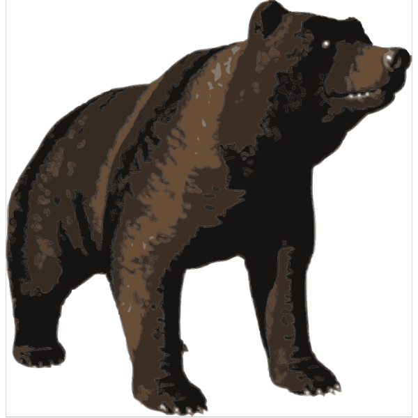 Brown Bear PNG Clip art