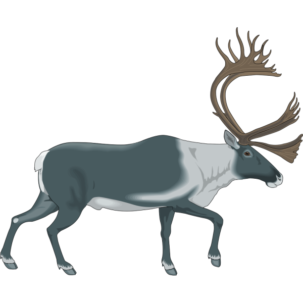 Walking Moose PNG Clip art