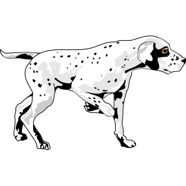 Walking Dalmation PNG Clip art