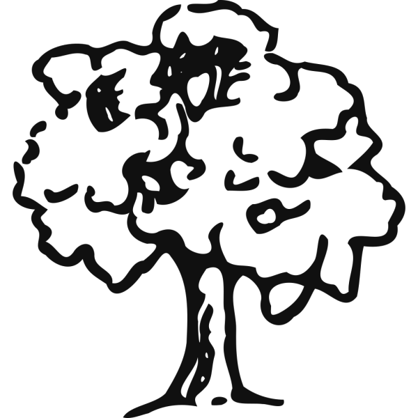Brown Tree Outline PNG Clip art