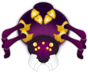 Spider On A Spider Web PNG icons