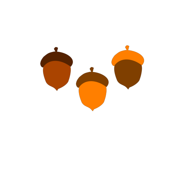 Acorns PNG images