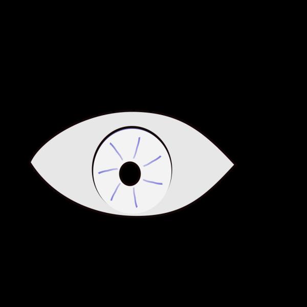 Blue Eye Looks Left PNG Clip art