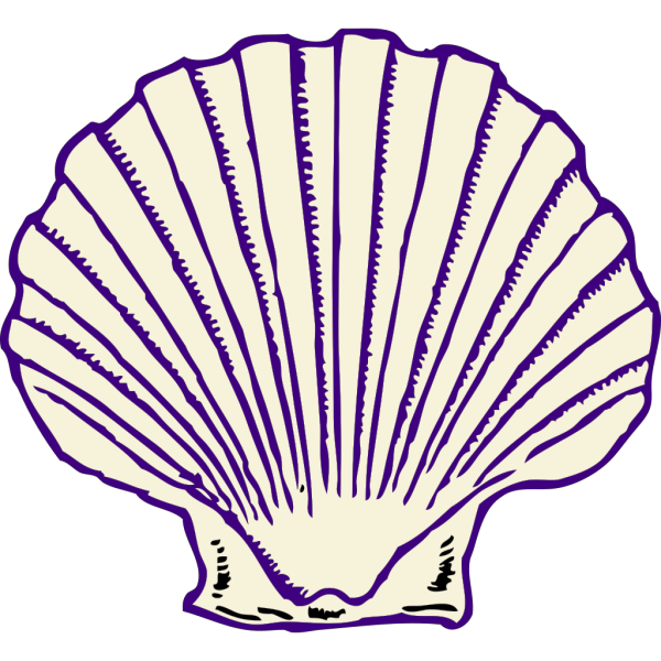 Purple Shell PNG Clip art