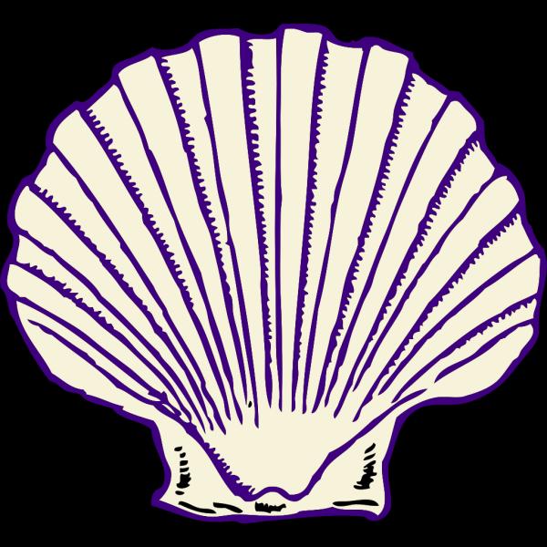 Purple Shell PNG Clip art