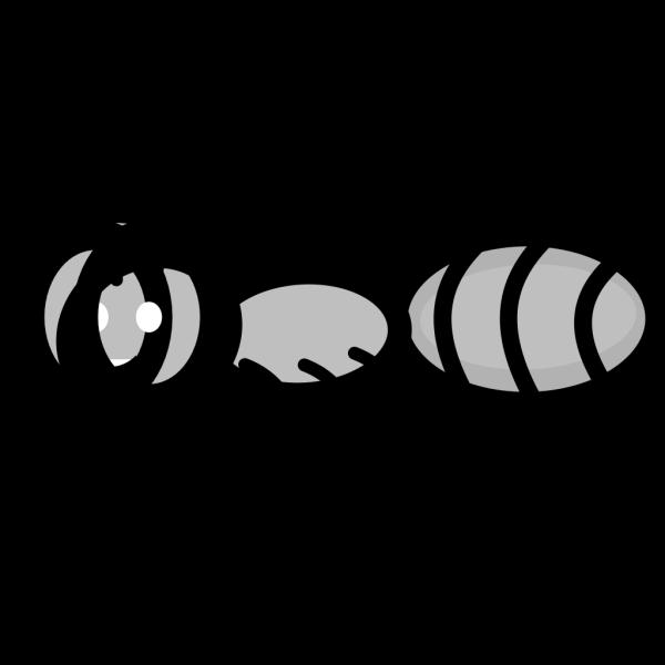 Ant PNG Clip art