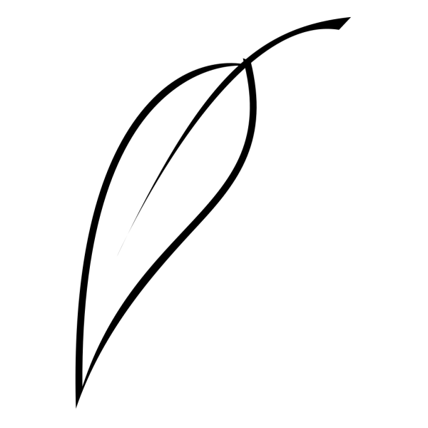 Black Tea Leaf PNG Clip art