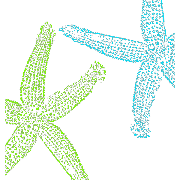 Turquoise And Lime Green Starfish PNG images