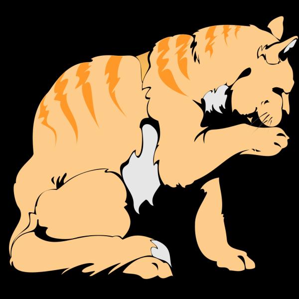Orange Cat PNG Clip art