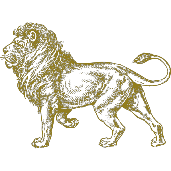 Lion Real Gold PNG Clip art