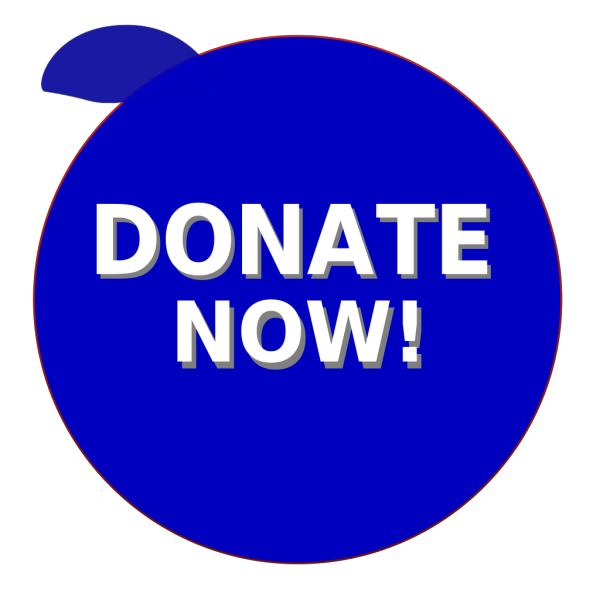 Donate Now PNG Clip art