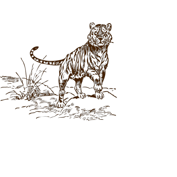 Tiger Brown PNG icon
