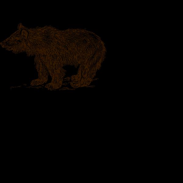 Bear Cub Brown PNG Clip art