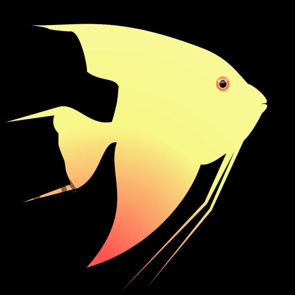 Angel Fish PNG Clip art