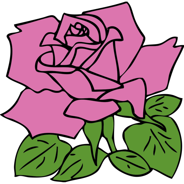 Rosette Outline PNG Clip art