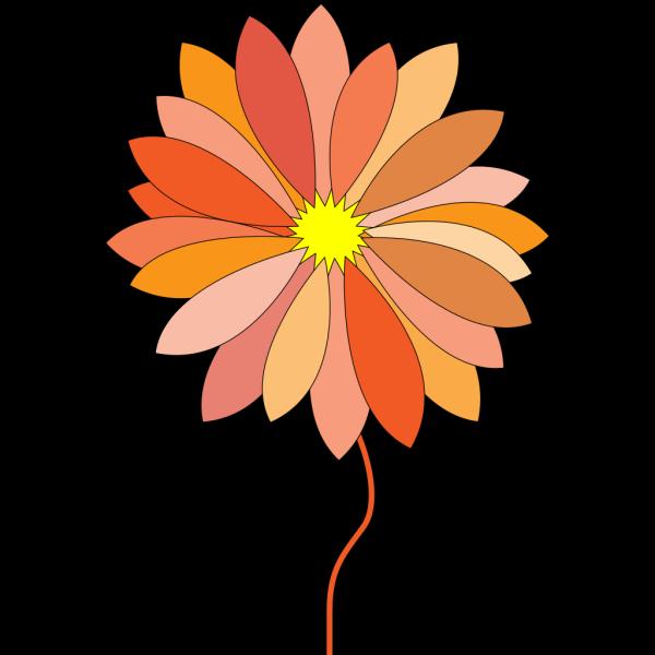 Orange And Brown Flower PNG Clip art