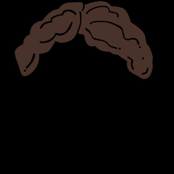Brown Hair Wig PNG Clip art