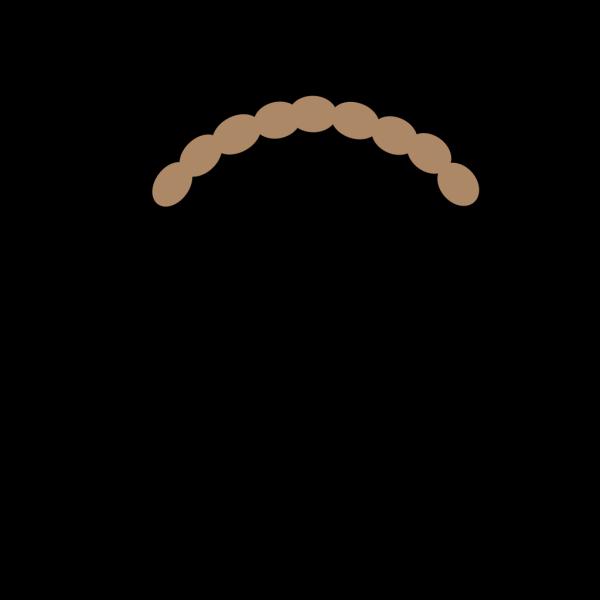 Coiled Snake SVG Vector, Coiled Snake Clip art - SVG Clipart