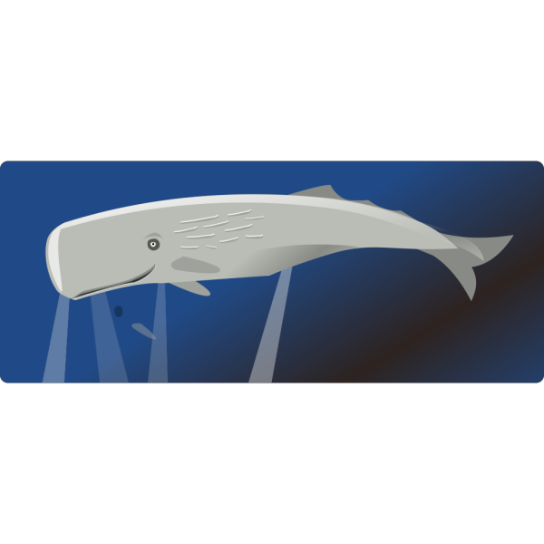 Swimming Whale PNG Clip art
