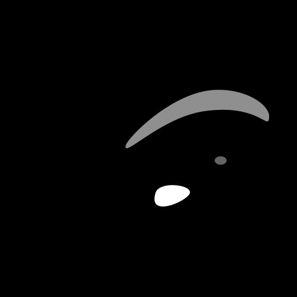 Whale Outline PNG Clip art