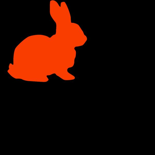 Orange Rabbit PNG Clip art