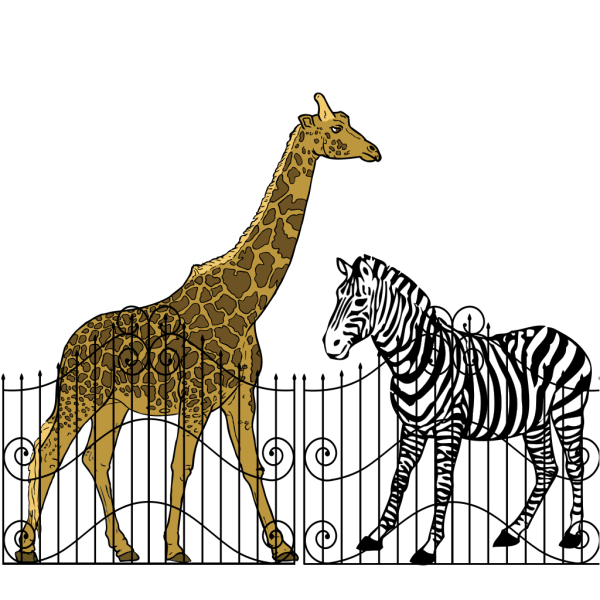 Zoo Animals PNG Clip art