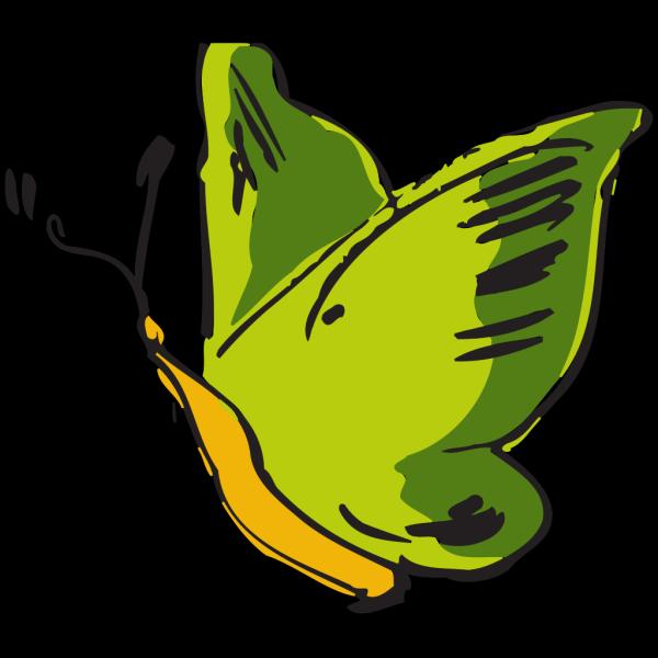 Green Butterfly PNG Clip art