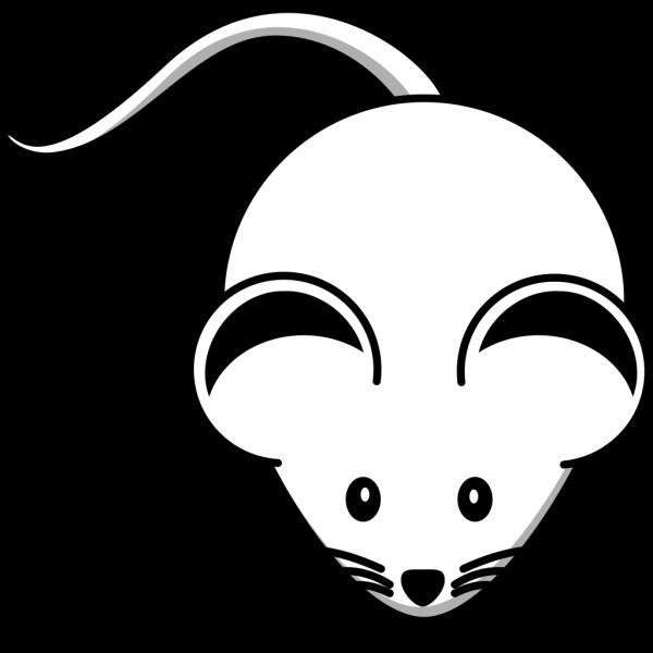 White Mouse Black Ears PNG Clip art