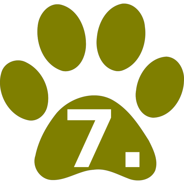 Paws Green PNG Clip art