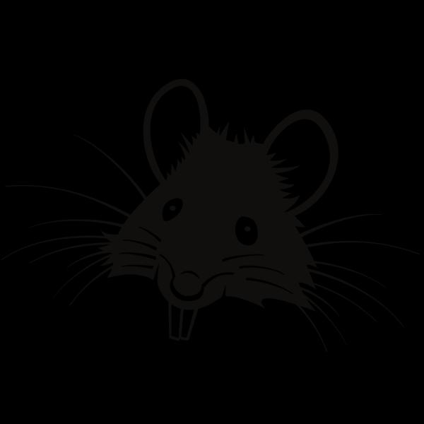Rat Border PNG Clip art