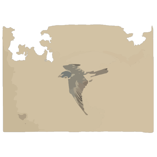[a Bird Flying To The Left, Seen From Above] PNG Clip art