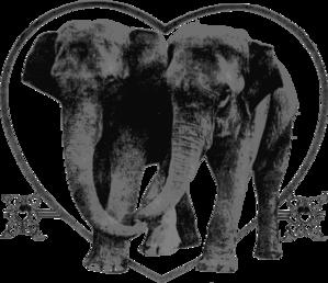 Elephants PNG Clip art