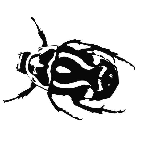Lady Beetle PNG Clip art