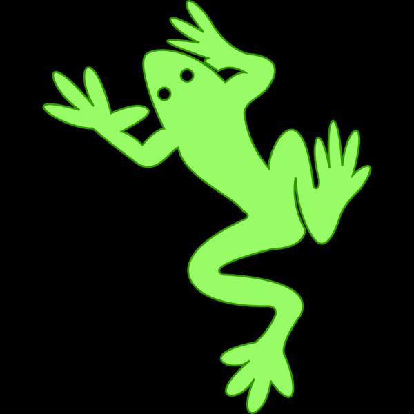 Amphibian PNG images