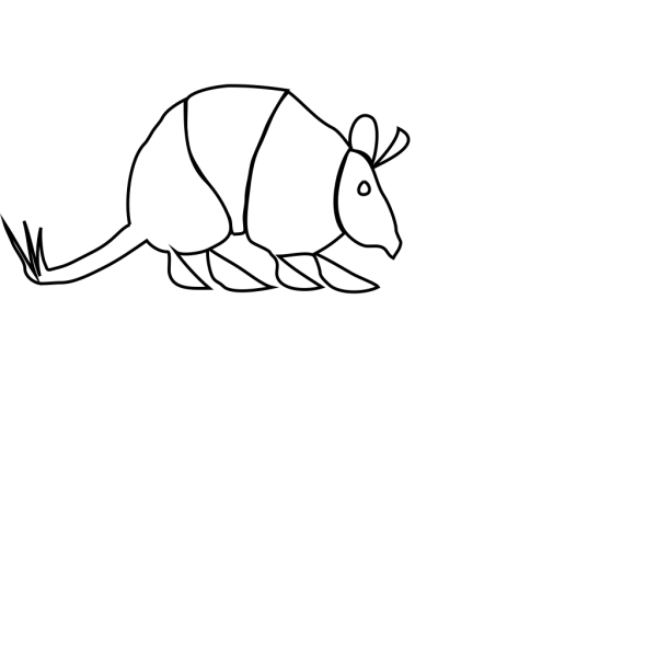 Armadillo PNG images