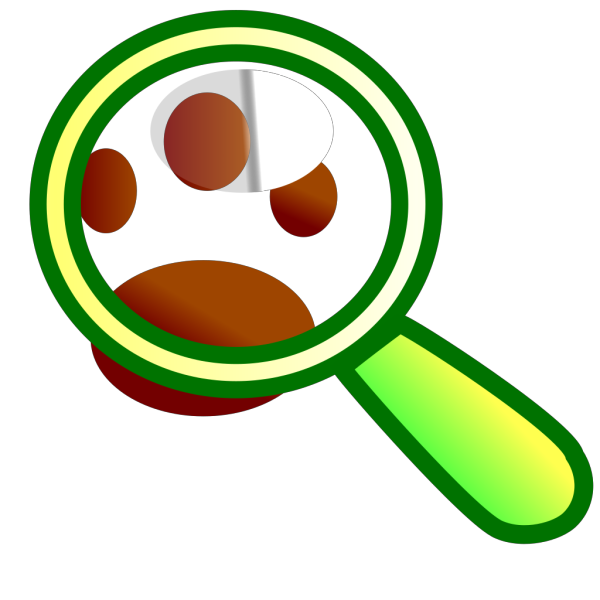 Animal Search PNG Clip art