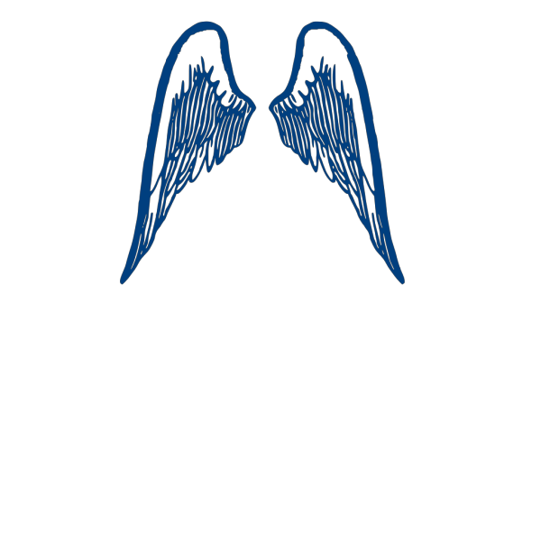 Blue Wings PNG icons