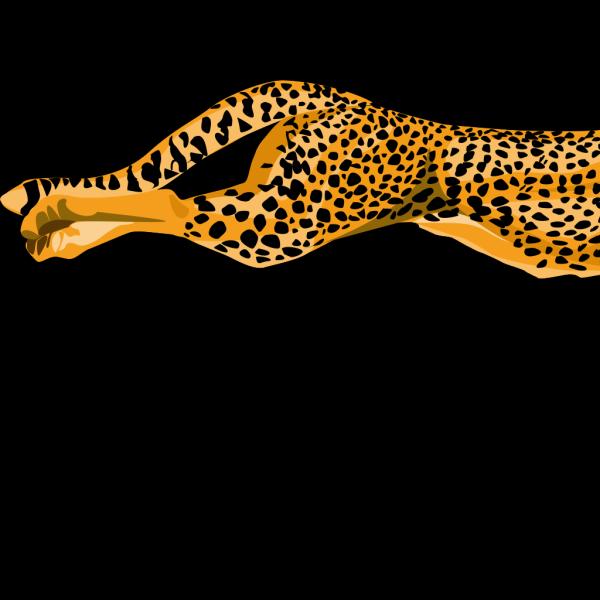 Cheetah PNG Clip art