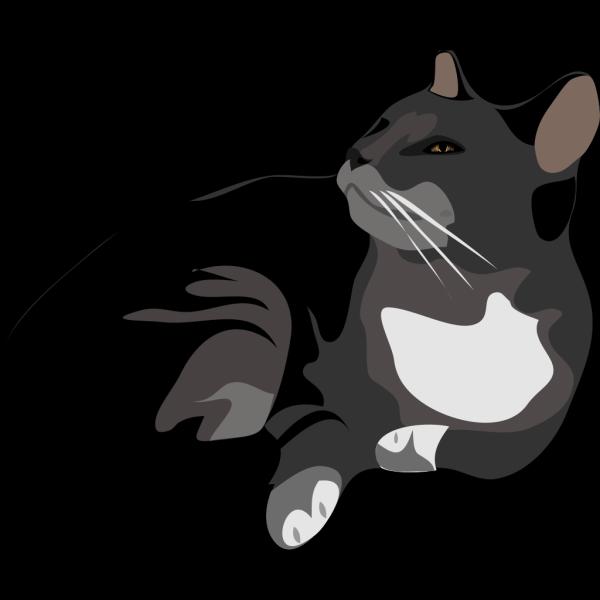 Cat Appealing PNG Clip art