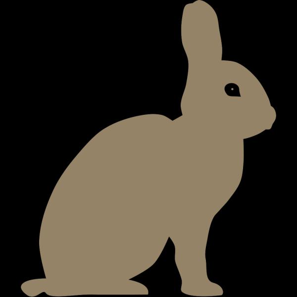 Gray Rabbit PNG Clip art