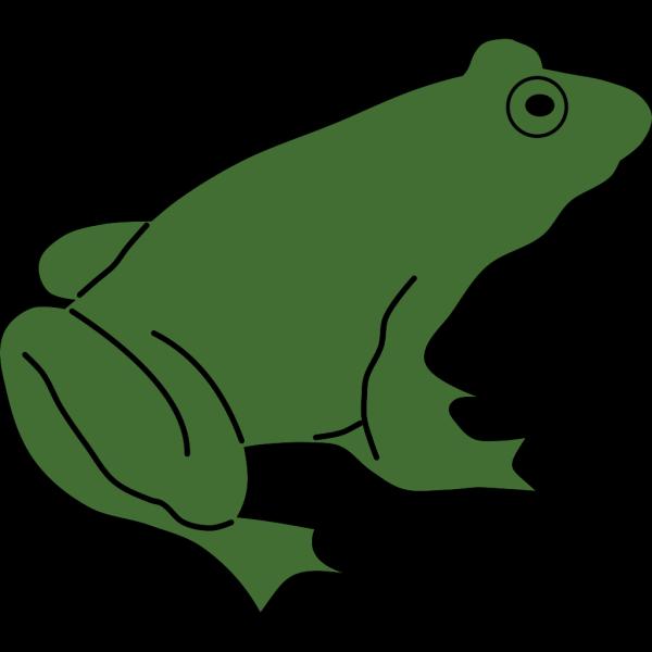 Frog PNG Clip art