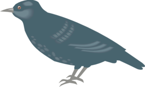 Starling Bw PNG Clip art