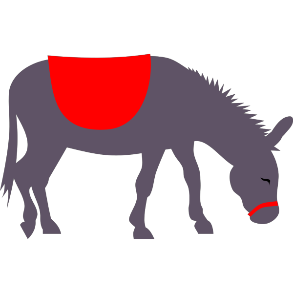 Donkey Ride PNG Clip art