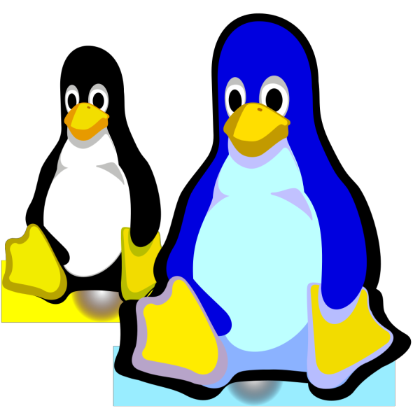 Two Penguins PNG images